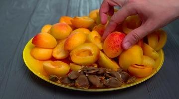 отделяем абрикосы от котсточек